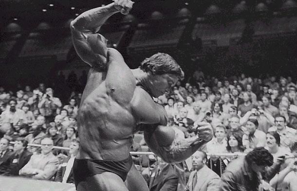 Arnold Schwarzenegger big arms